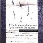 De la source des larmes, au sommet des églises, Compostelle ou la poétique d'une errance