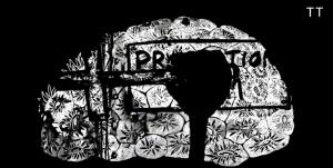 Clip : BORING – OTTO VØN ORCHESTRA
