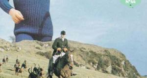Julien Bonnaric – Nid de ciseaux