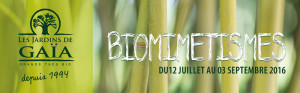 BIOMIMETISMES