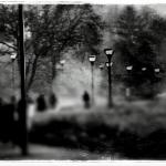 Exposition de photographies : Les Ombres