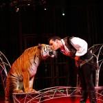 Le Cirque d'Hiver Bouglione s'arrête à Strasbourg