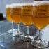 Brasseries historiques, familiales ou plus récentes, houblonnières et traditionnelles Bierstub, bars et caves à bières, l'Alsace porte une culture brassicole parmi les plus riches et les plus anciennes en France. C'est ce patrimoine que L'Echappée Bière Strasbourg souhaite mettre en valeur.