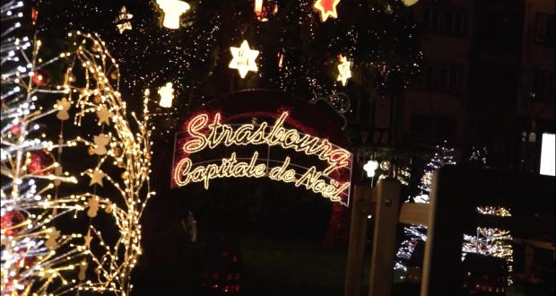 Ayant suivi avec attention les mésaventures du sapin de Noël de Strasbourg, Nicolas Reitter, a décidé de s'en inspirer pour réaliser un court-métrage.