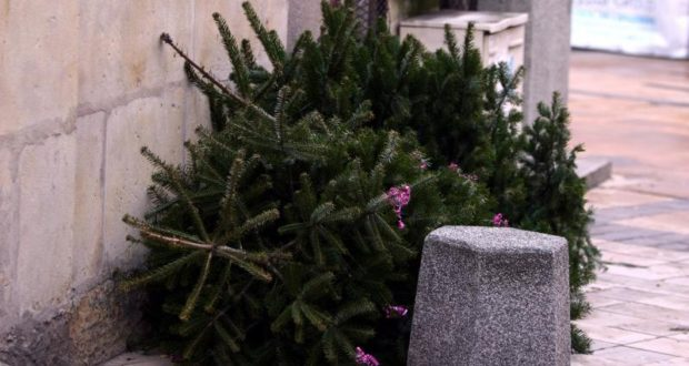 Les fêtes hivernales passées, les sapins qui avaient fait le bonheur des familles au sein de leur foyer jonchent à présent sur le bitume. L'association STRA.CE organise la 7ème édition de la collecte des sapins de Noël à Strasbourg, lesamedi 13 janvier, de 14hà 18h, sur la Place Broglie.