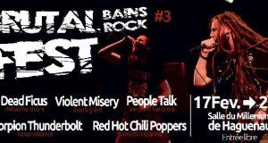 Pour le plus grand bonheur des amateurs de musiques extrêmes et HxC, les Bains Rock organiseront, le 17 février 2018, le troisième Brutal Bains Rock Fest. A cette occasion, cinqu groupes d'Haguenau monteront sur la scène du Millénium.