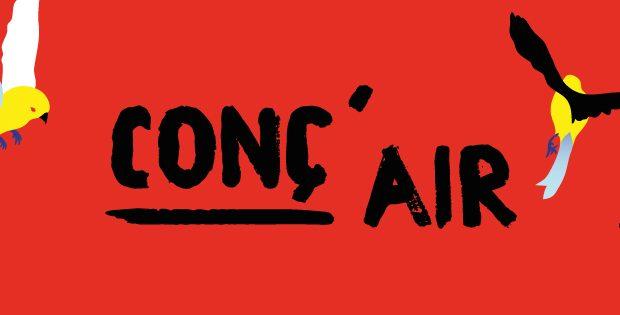 Cette année, le festival Conc'Air aura lieu les week-ends des 20-21 juillet et 3-4 août sur la place du Forum de Saint-Louis. Au programme de cette nouvelle édition : quatre soirées et huit concerts.