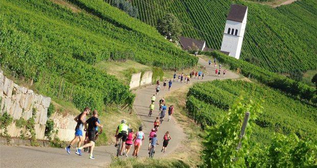 Amis sportifs, le Marathon de Colmar revient pour sa quatrième édition et se tiendra le dimanche 16 septembre ! Encore une belle occasion d'aller arpenter certains des plus beaux villages alsaciens...