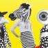 Théâtre, performance, fanfare, effeuillage, musique, danse, déambulation, conte musical, improvisation... Bienvenue à ThéÂtralis, le festival de théâtre amateur de Strasbourg ! Rendez-vous du 1 au 3 novembre à l'Espace K pour trois jours de spectacle, de folie...