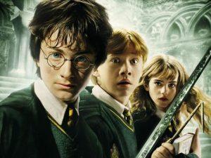 À l'occasion des 20 ans de la sortie du premier livre de la saga Harry Potter, La Fan Zone, la librairie « Le Camphrier », Les survivants du Donjon et l'association Kakemono se sont associés pour proposer un événement unique, au Centre Culturel Marcel Marceau le samedi 20 octobre.
