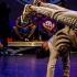 Le 5 mai, la compagnie Mira vous donne rendez-vous au Point d'Eau pour une 8e édition du battle The Circle of Dancers. Il accueillera comme à son habitude des danseurs hip hop venus de toute la région, d'Allemagne et de Suisse.