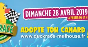 C'est une première à Mulhouse ! Le 28 avril, 12 000 canards en plastique se jetteront à l'eau pour 770 m de course le long du canal de l'Ill, de la place du marché jusqu'au Musée de l'Auto, à l'occasion de la Duck Race.