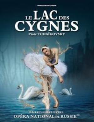 image - Le lac des cygnes