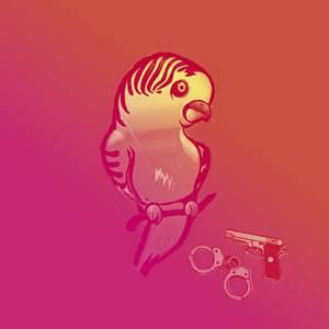 image - La perruche et le poulet
