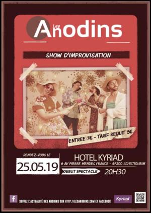 image - Le Show des Anodins