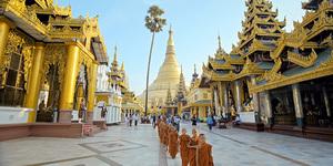 https://www.coze.fr/cozecus/upload/2019/12/120456-cdm_birmanie_gdjpg-thumb-w