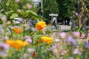 Visite à vélo Deux-Rives
