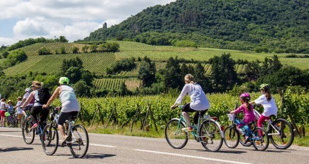 À pieds, à vélo, en trottinette ou en roller, venez découvrir la Route des Vins d'Alsace le temps d'une journée festive et gourmande à l'occasion de la 7e édition de SlowUp Alsace ! Rendez-vous le 2 juin, au pied du Château du Haut-Koenigsbourg, pour découvrir l'Alsace sous un nouveau jour.